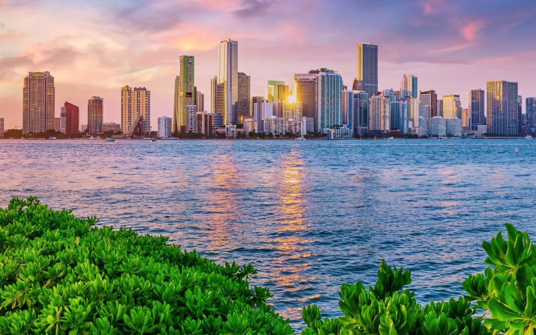 Learn More about Our Miami Court Reporting Firm